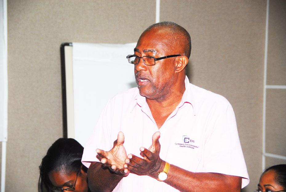 lesmond Magloire - Technical Consultant - CEHI | LinkedIn